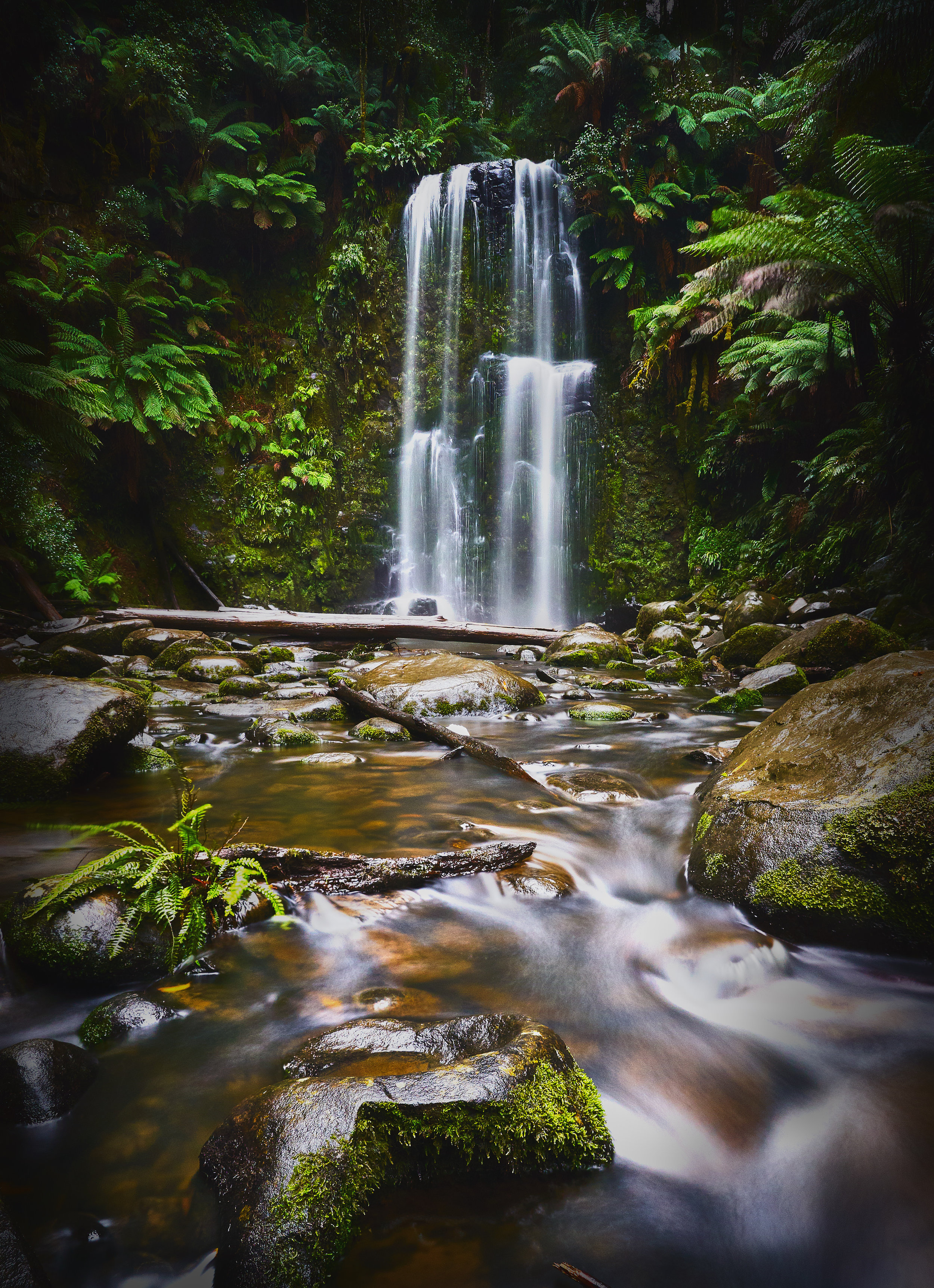 Beauchamp Falls | Standing in the river to take this shot, feeling the cold spray from the falls and immersed in the sounds of the water crashing on rocks at the bottom of a deep valley of ferns and tall gum trees made me feel connected to life.