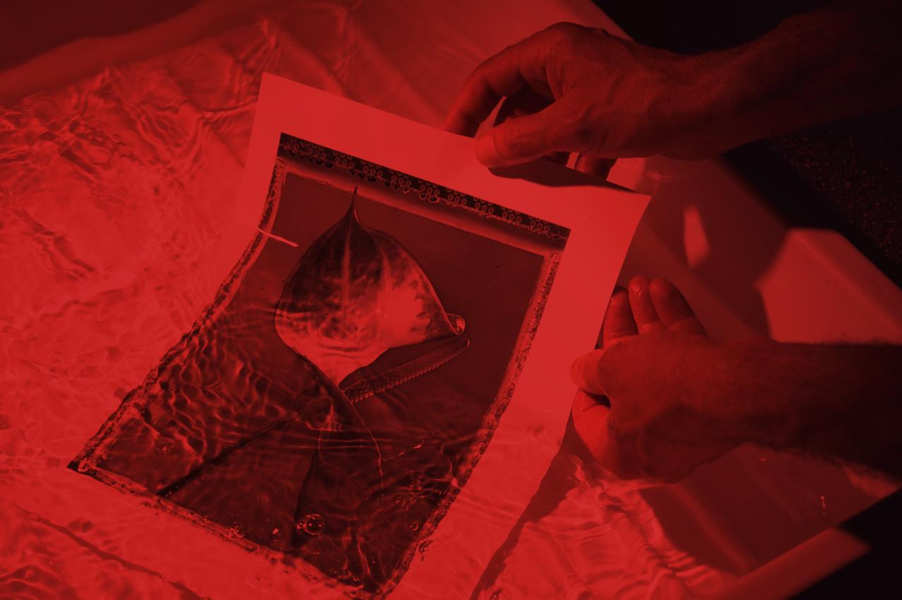 il-laboratorio-bn-lavorazione-analogica-bianco-nero-stampa-ai-sali-d'argento-fine-art-carta-baritata