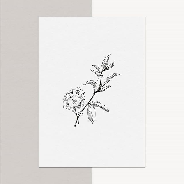 Hand-drawn illustrations cultivate  brands👌  Do you use an illustration in your brand? If so, share your illustration below by posting an emoji that resembles it.  We'll start...🌿 #cultivatecreativity #handillustration #brandillustration #boutiquedesignstudio #daytonart