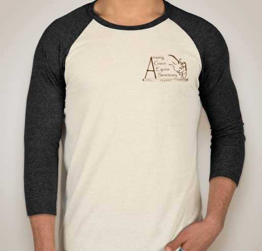 Raglan Baseball Tee - 4 Colors to Choose From
