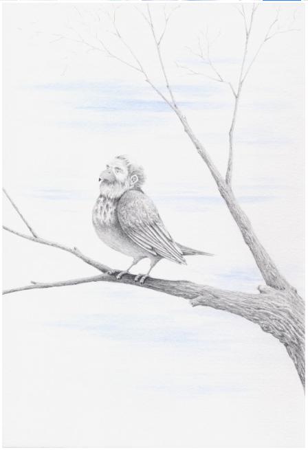 A Northern Birdman Rests