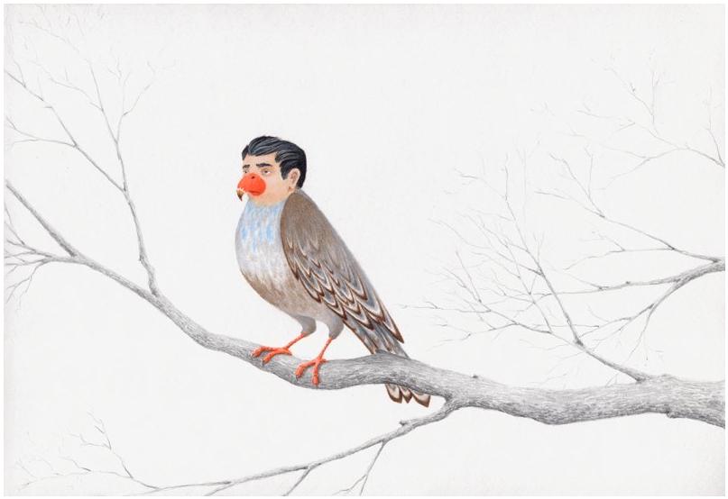 A Northern Birdman