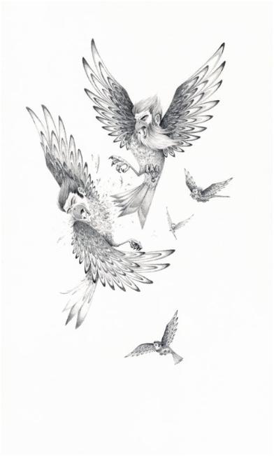 The Northern Birdmen Attack