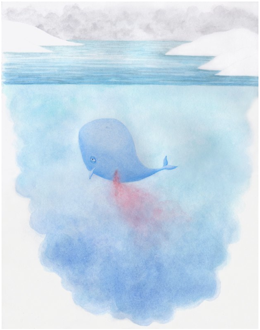 The Wounded Whale Goes Home