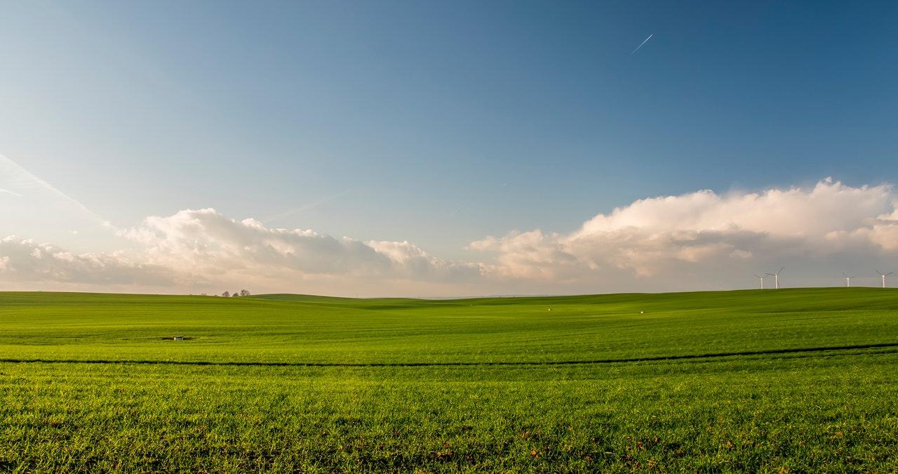 blue-sky-clouds-crop-388415.jpg