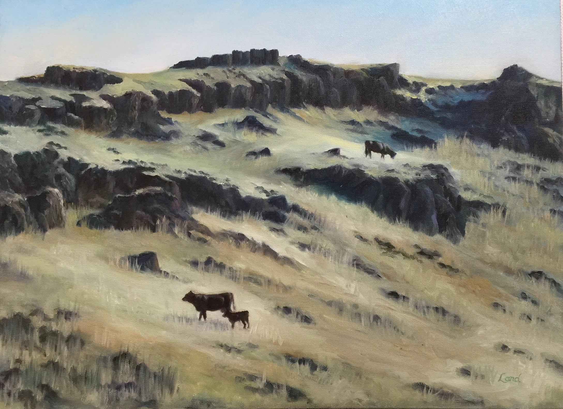 Cattle Grazing in the Columbia River Gorge (Honorable Mention)