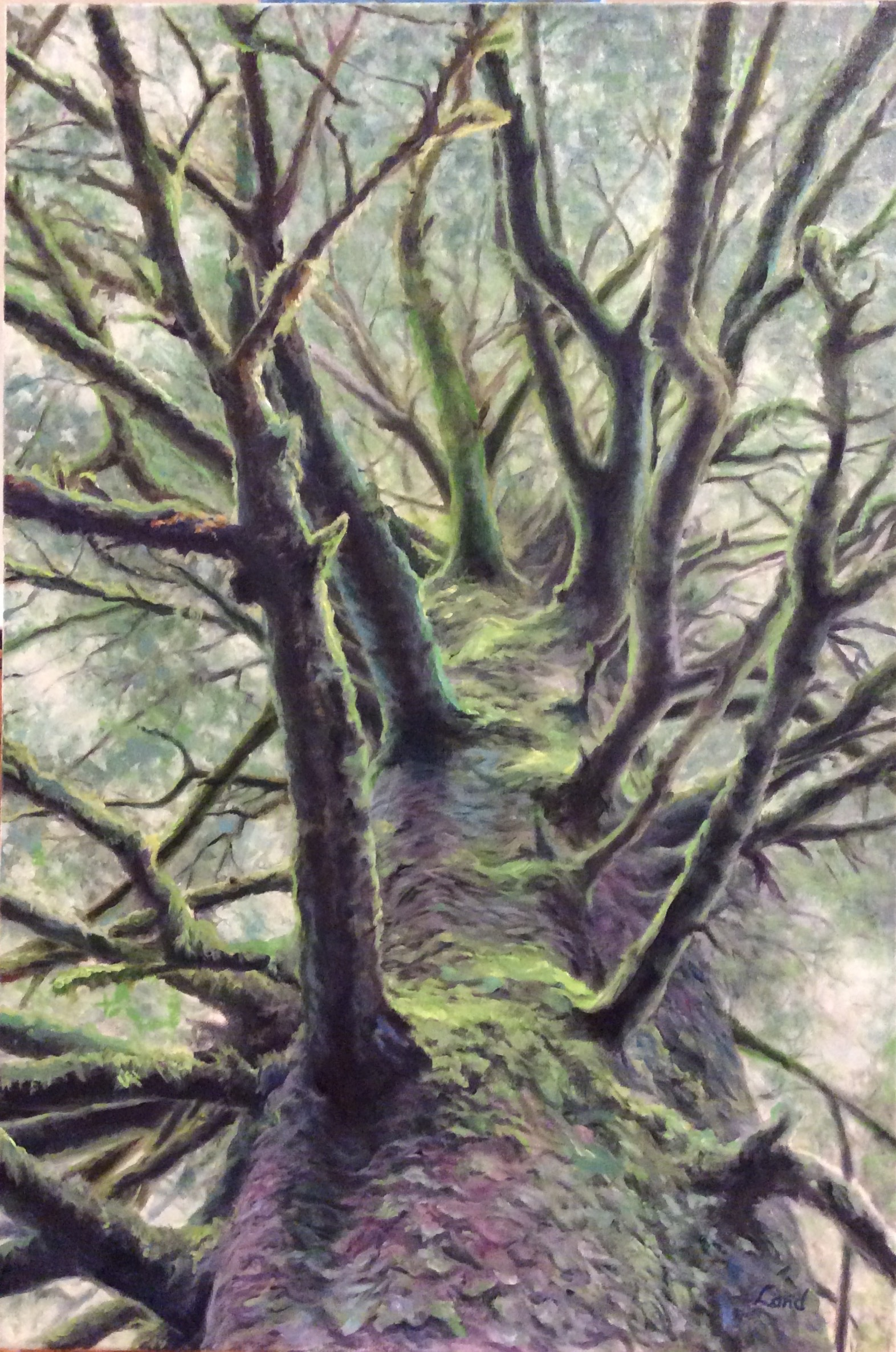 Salishan Tree Painting.jpg