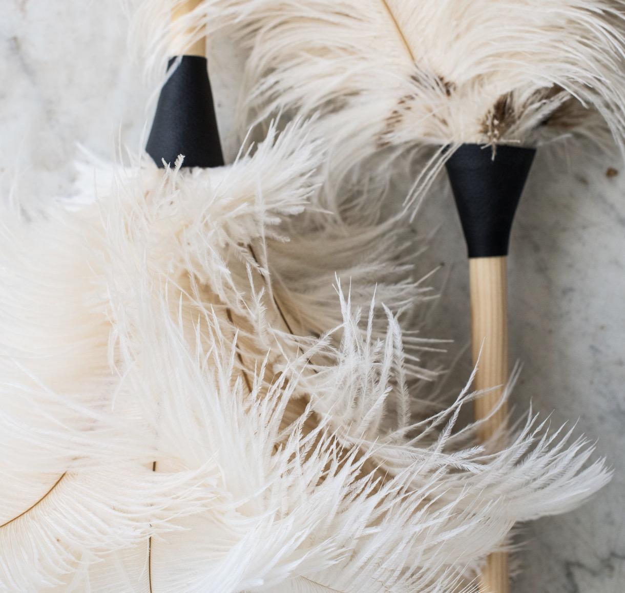 Feather Duster, $38