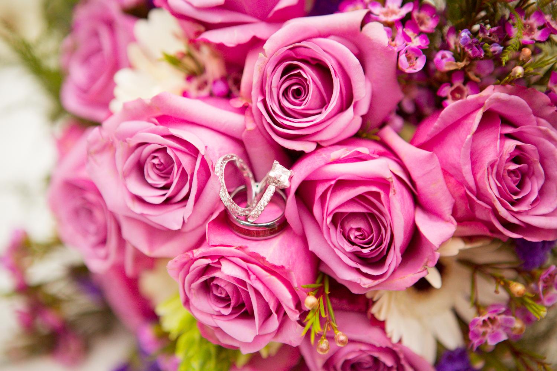 Wedding-2-Paul-Steward-335.jpg