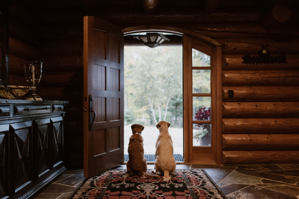 Dog Friendly Guide to the North - What is a family vacation without your favorite four-legged friend? From Airbnb cabins to bike trails and pontoon rides, we've gathered a guide to some of the best places to explore with your dog in the Northwoods.