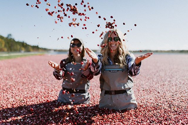 Are you as excited as we are for Adventure North Retreat 2018? .  We cannot wait to welcome some amazing ladies to our home in the Northwoods this weekend to show them all of the things we love the most - like cranberry harvest. Wine + cheese pairing bog-side and personalized farm tour of a 4th generation cranberry farm.