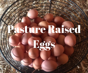 Pasture Raised Eggs.png