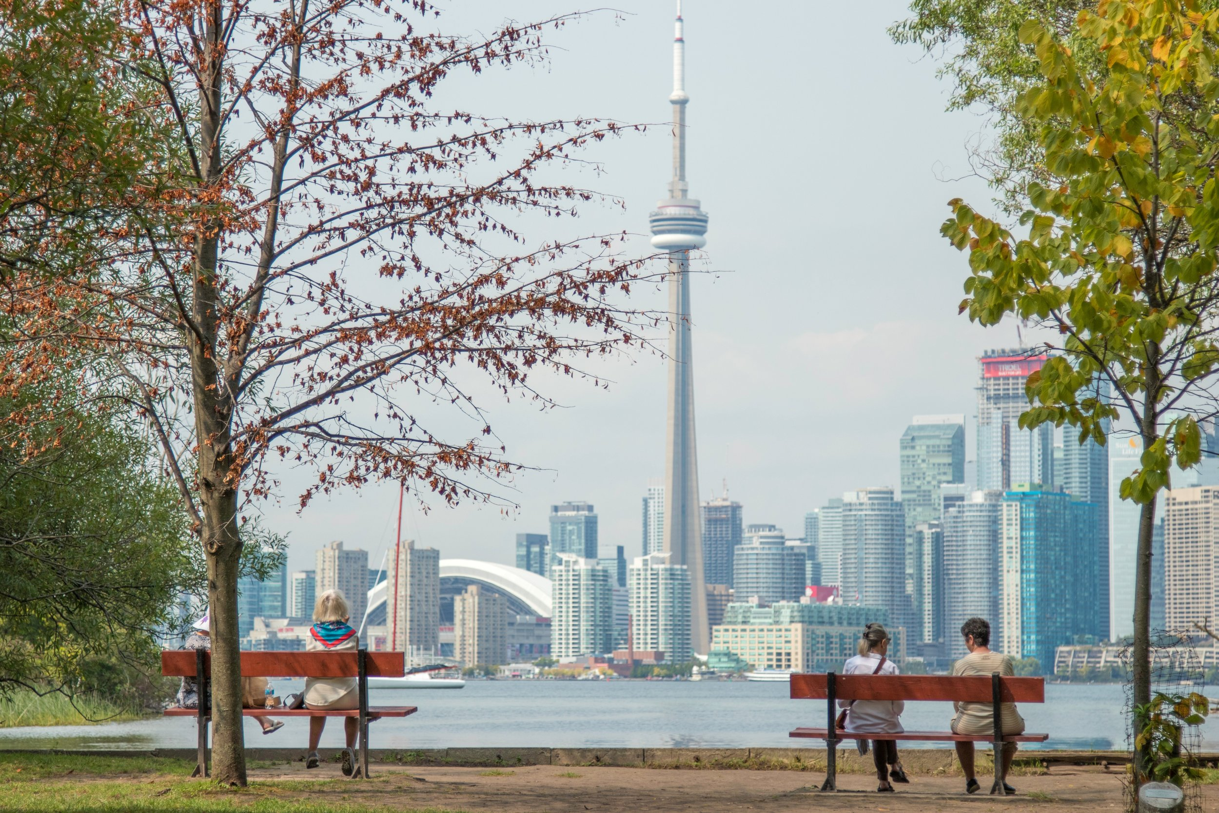 Toronto is growing at such a rate that residential construction cannot keep pace.