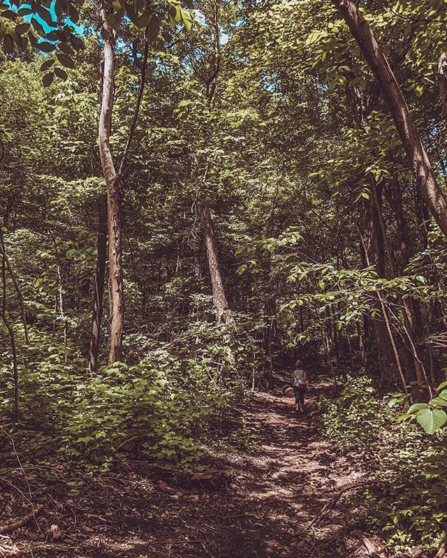 🌳 Can you spot me in the forest? 🌳  Travel has always been a huge part of my life, and one of the biggest reasons I chose to get an IUD was because it would make travelling easier. I wouldn't have to worry about running out of birth control pills or having irregular periods and awful PMS. Choosing a birth control method that's right for you can be really hard. Over the years, I've tried almost every form of hormonal birth control available, so I put together an article to chronicle my experiences with each. Have a read to find out how I got on with the pill, the coil and other types of birth control. Link in bio.  #uterusesbeforeduderuses #reproductivehealth #birthcontrol #womenshealth