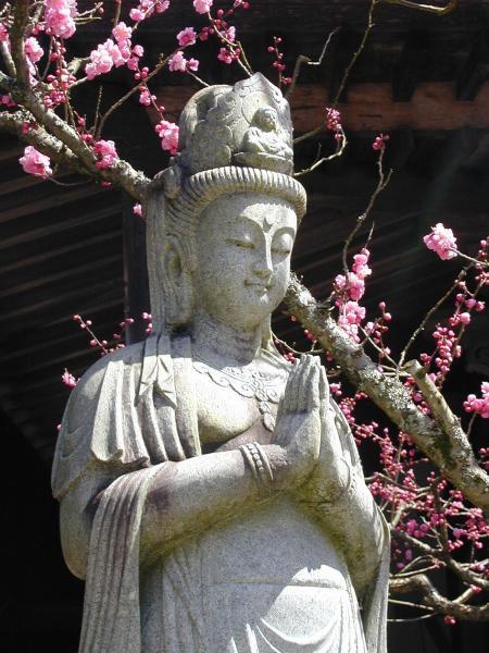 Kuan Yin, Tibetan Buddhist Goddess of Compassion