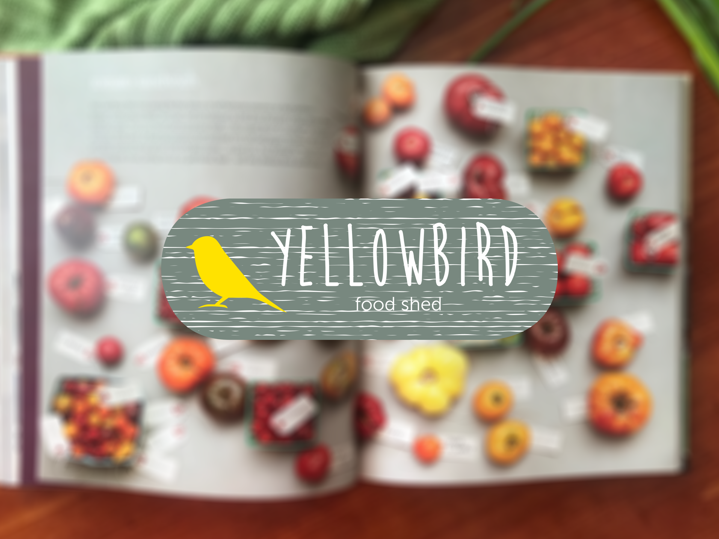 YELLOW_BIRD_FOOD_SHED_COVER_2400X1800.png