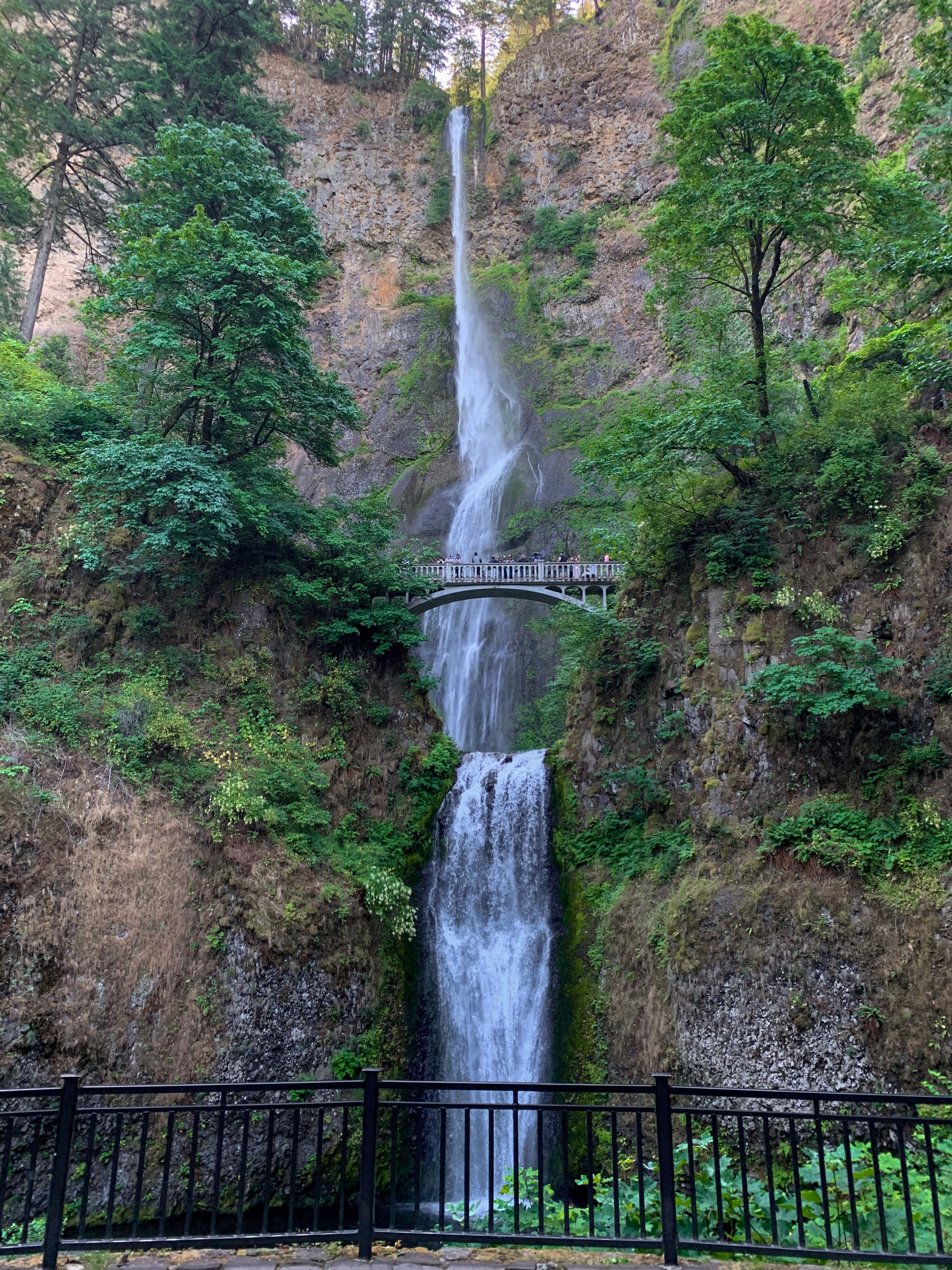 Best Waterfalls in Oregon | Multnomah Falls