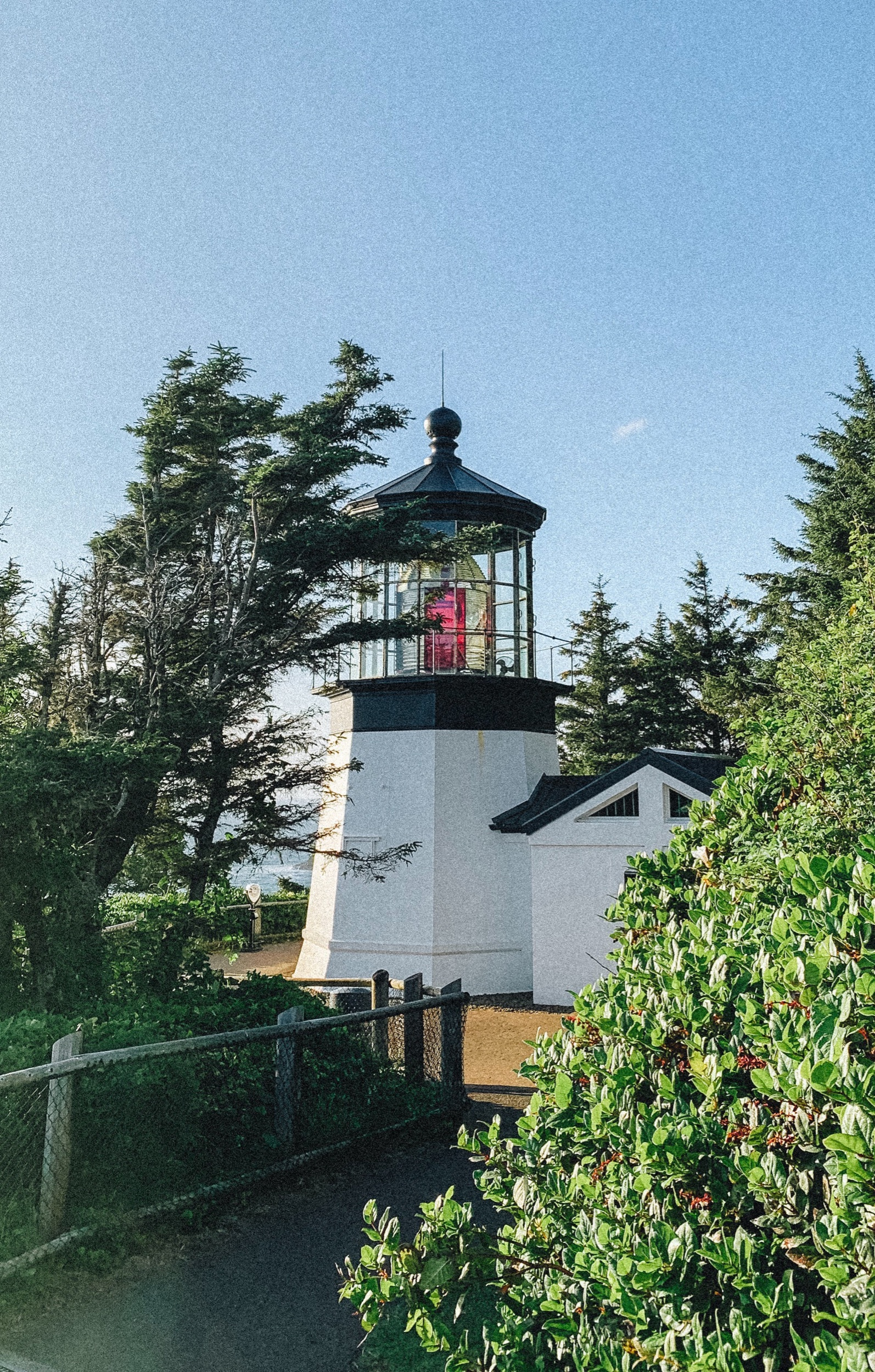 Pictured: Cape Meares Lighthouse