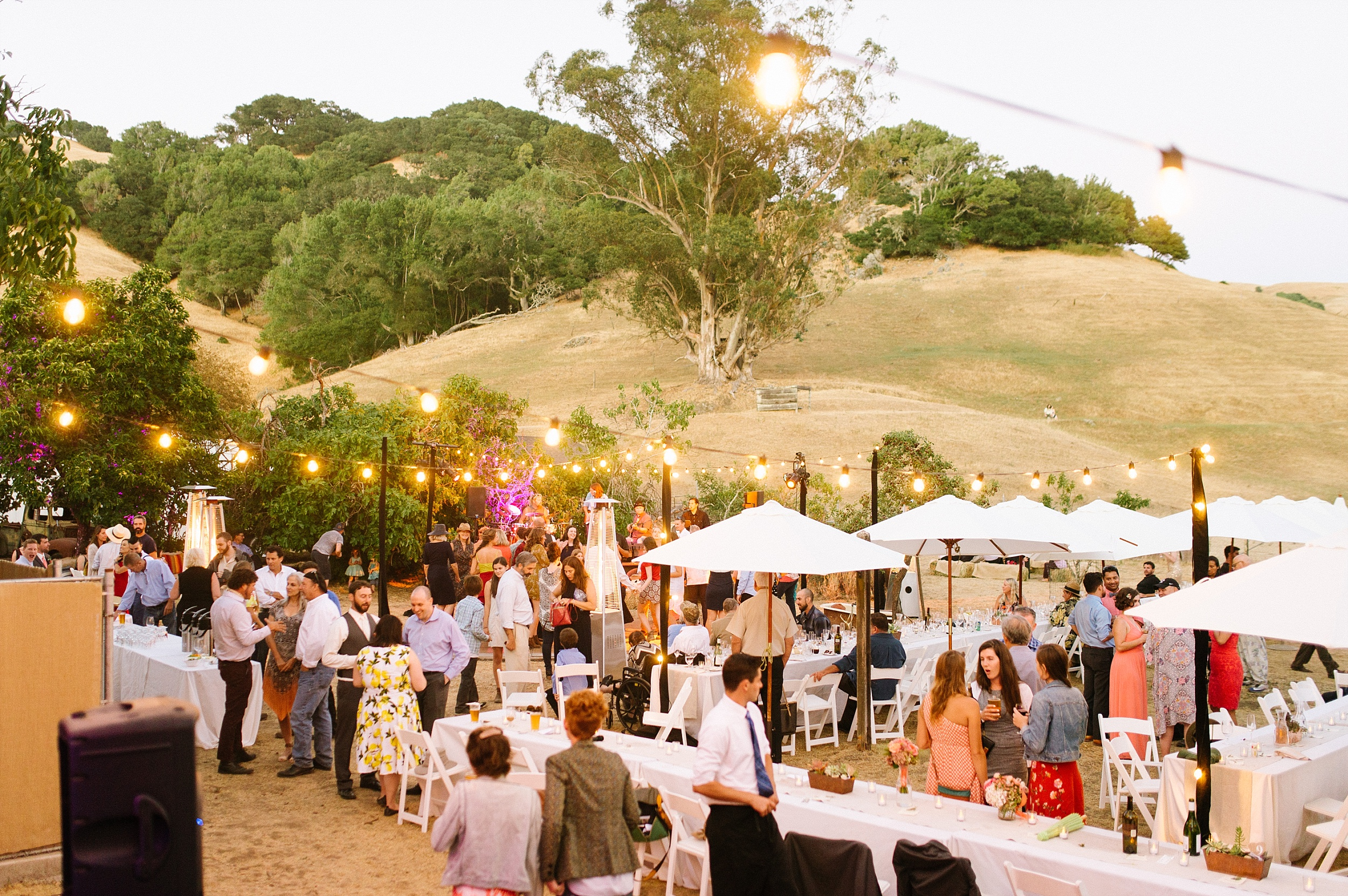 fairfax_ranch_wedding_chelsea_dier_photography_0055.jpg