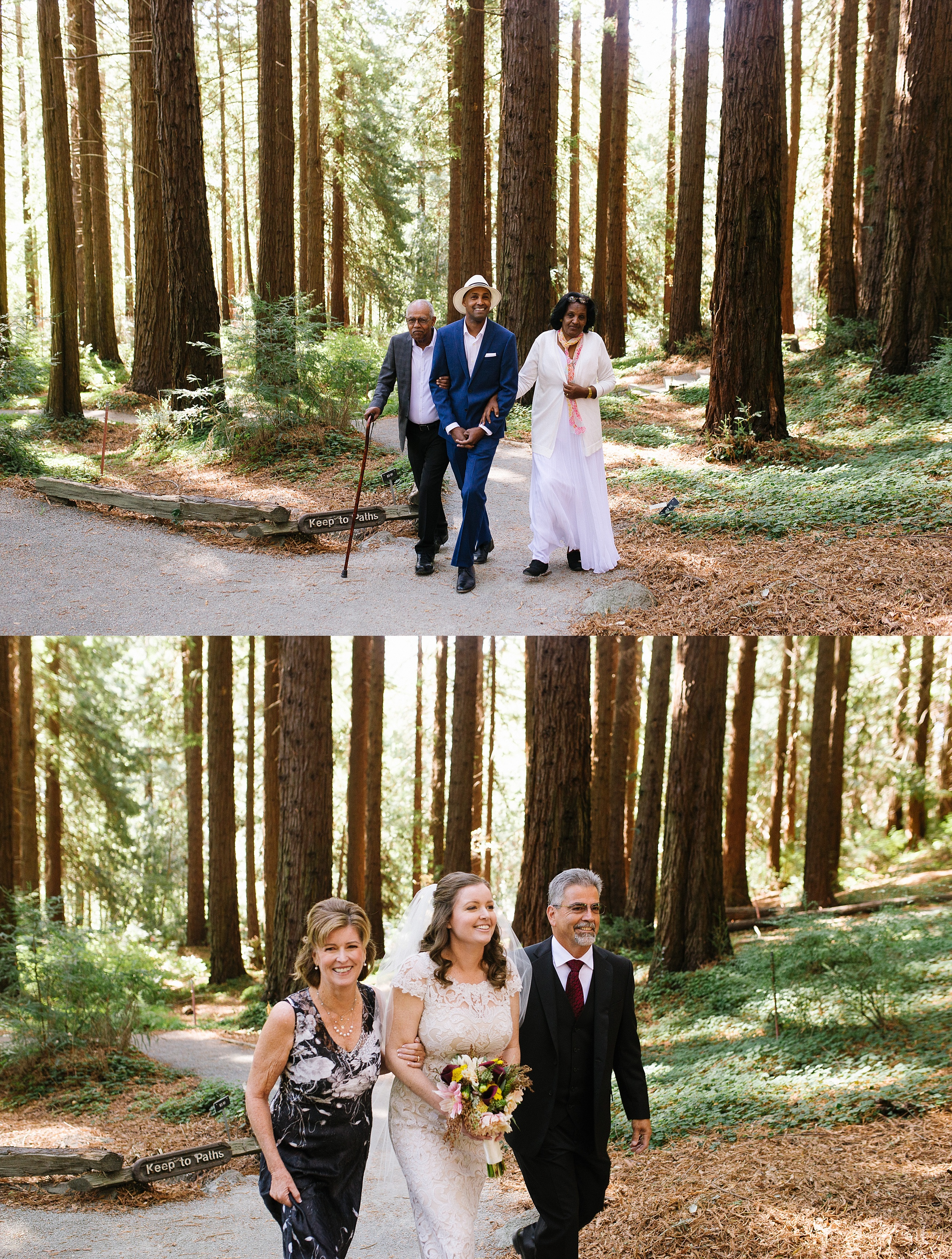 ucberkeley_botanical_redwoods_outdoor_wedding_jennyrez_cdp_0011.jpg