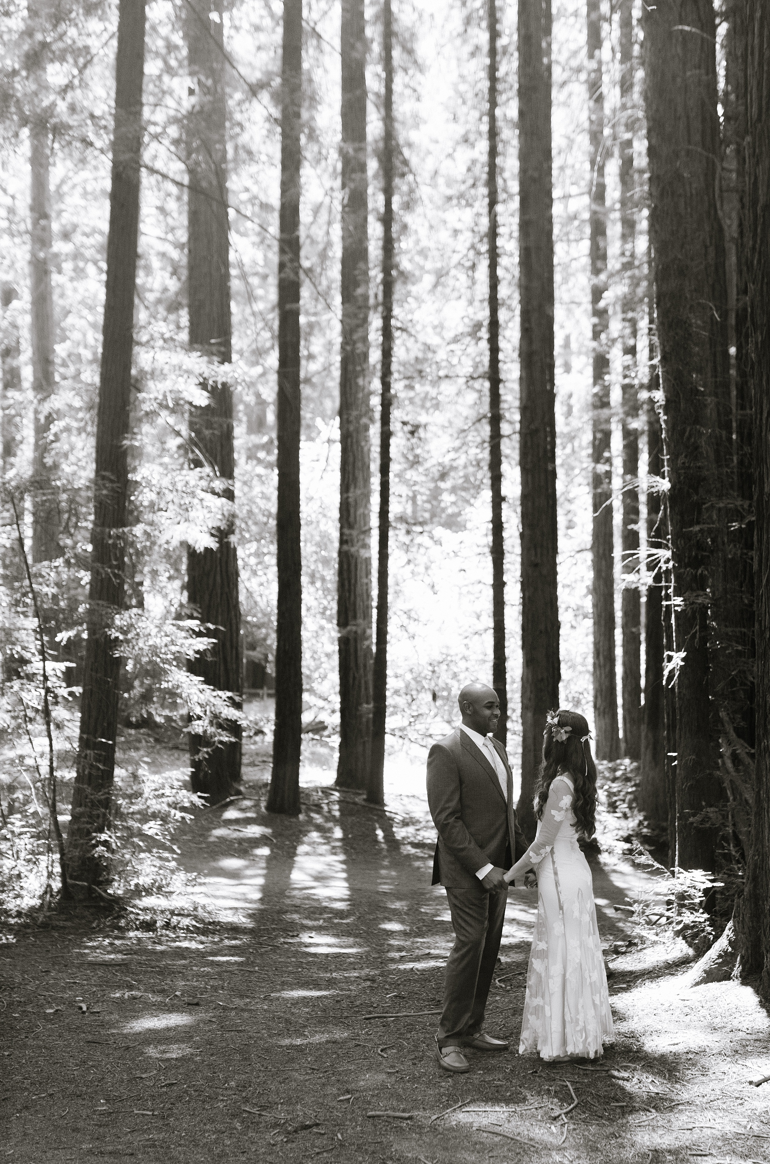 oakland_backyard__redwoods_wedding_chelseadierphotography_0015.jpg