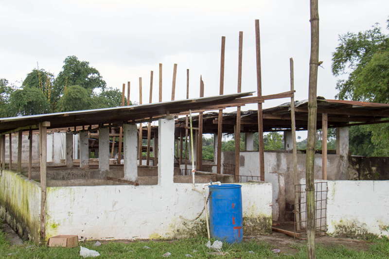This is St. Isadore's Piggery before its rennovations.