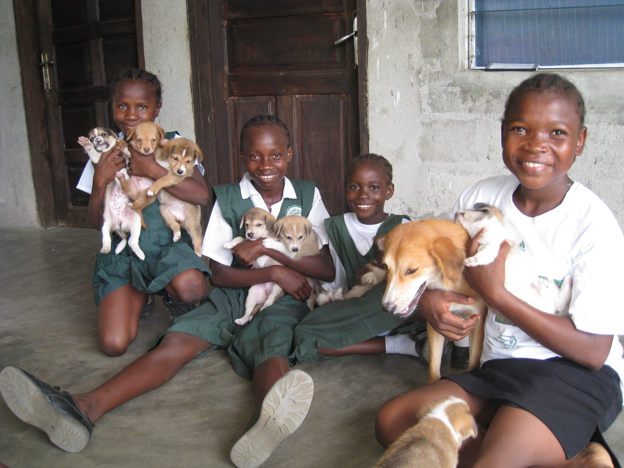 Students greeting a new litter of puppies on Liberia Mission in 2011.