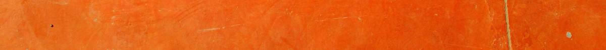 Orange Liner.png