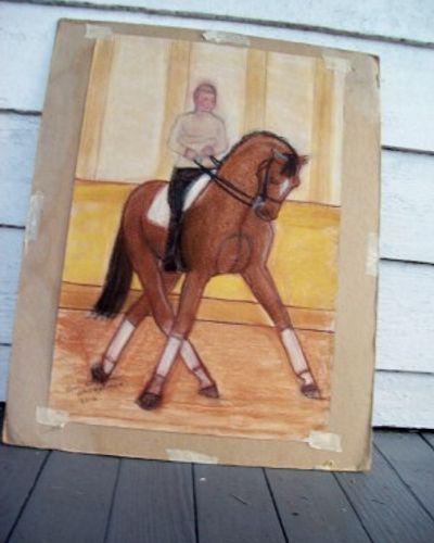 vw horse pciture.jpg