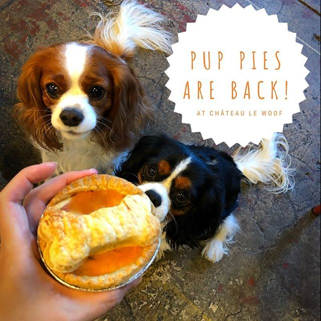 Pup pies are back!!! @jae081 just baked a fresh batch. This weeks feature is bacon and sweet potato. The pups can't get enough. . . . #brunchastoria #astoriaqueens #astoriaeats #dogcoffee #astoriabrunch #dogcafe #dogbakery #dogbakedgoods #bakeddogtreats #dogsofny #dogsofnyc #dogsofnewyork #dogsofastoria
