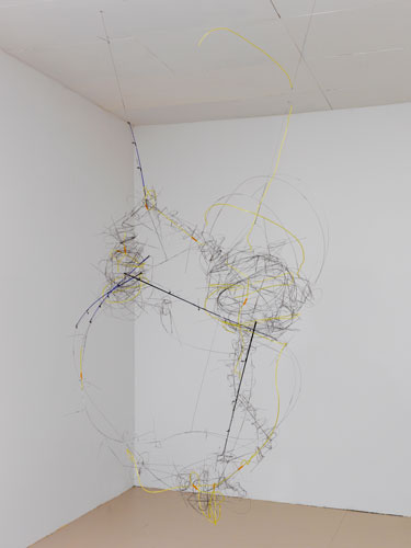 """amazon station ,2015 stainless steel wire, plastic tube, fishing poles 75 x 47 x 24"""""""