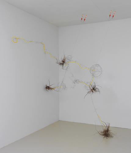 """adrift ,2014 stainless steel wire, roots, plastic tube, bobbers 117 x 79 x 54"""""""
