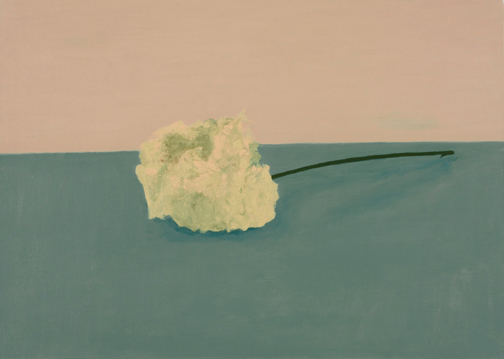 hydrangea , 2009 oil on canvas 17 1/4 x 24 1/8 inches