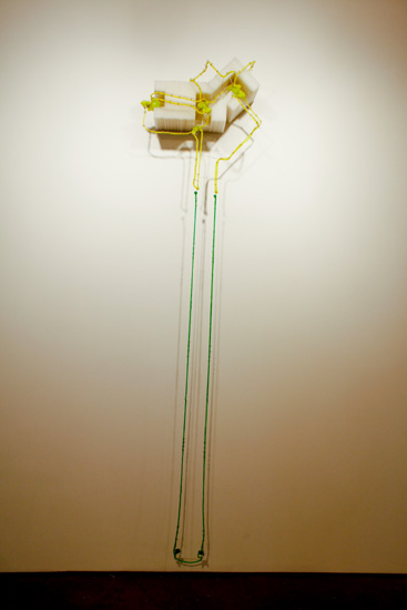 """That Other Place , 2009-10 corrugated plastic, stainless steel wire, silicone rubber  100"""" x 20 """" x 11 1/2 """""""