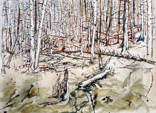 The Elk in the Woods,  2011 Ink and watercolor on paper  20 x 27 inches
