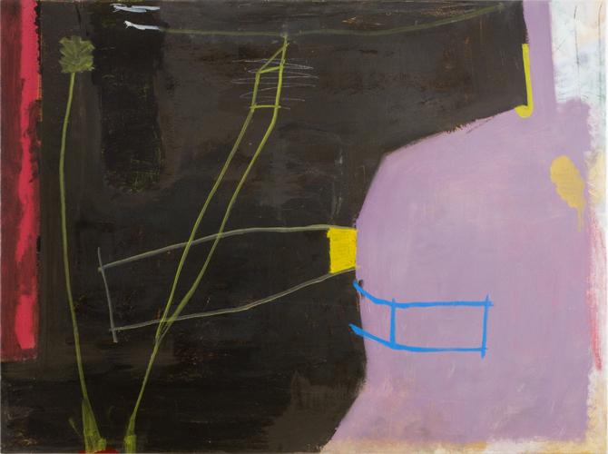 "incidental , 2010 oil on canvas 36 x 48"""