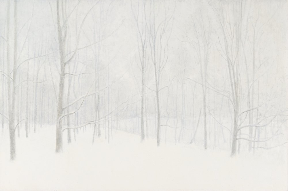 Woods in Winter, 2017  oil on panel  12 x 18 inches