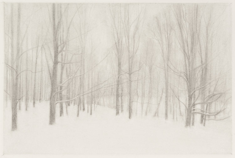 Snowing , 2017  pencil on paper  12 x 18 inches