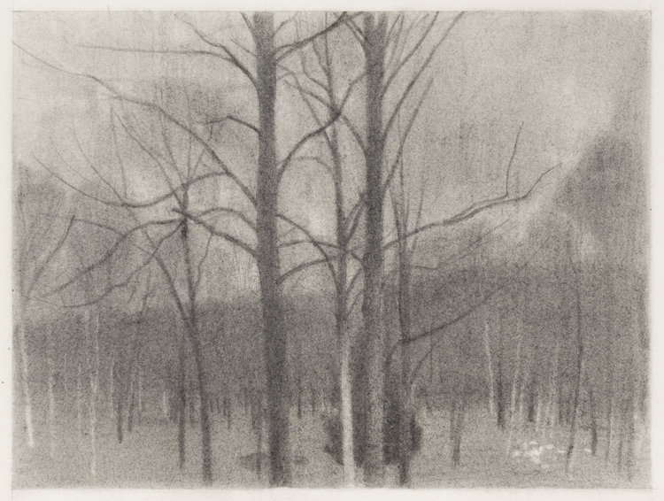 Before Night, 2016  pencil on paper  9 x 12 inches