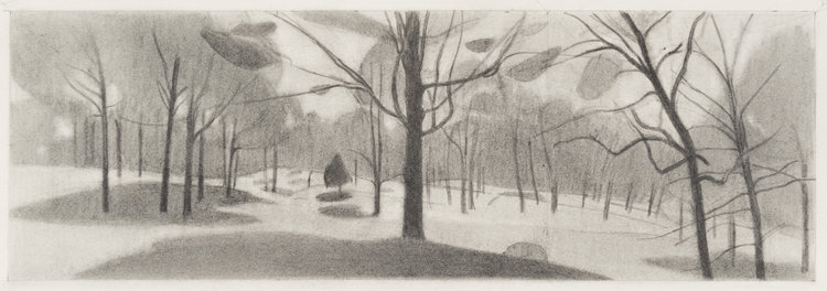Yellow Spring , 2017  pencil on paper  6 x 18 inches
