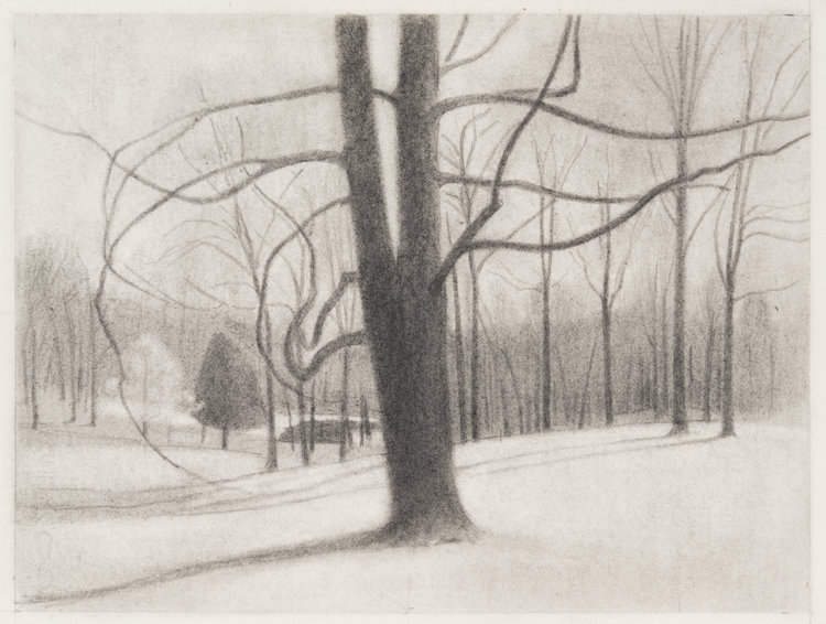 Warm Winter , 2017  pencil on paper  9 x 12 inches