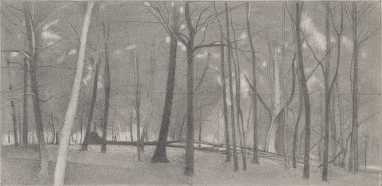 Fall , 2016  pencil on paper  9 x 18 inches