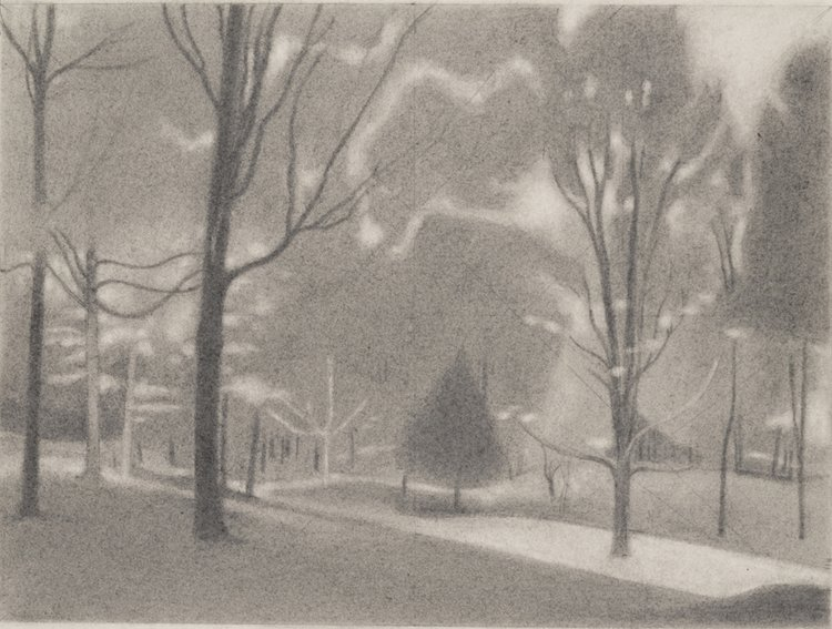 Glade , 2016  pencil on paper  9 x 12 inches