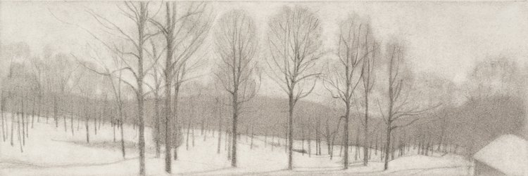 Tall Trees , 2017  pencil on paper  6 x 18 inches