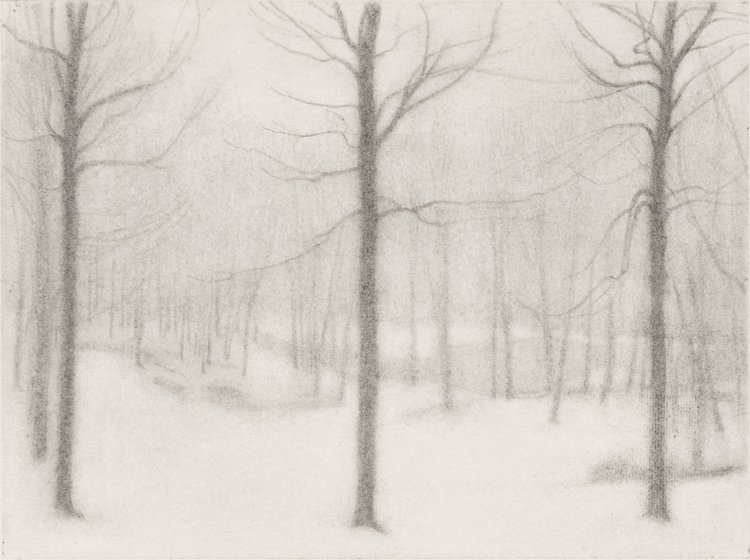 Three Trees , 2017  pencil on paper  9 x 12 inches