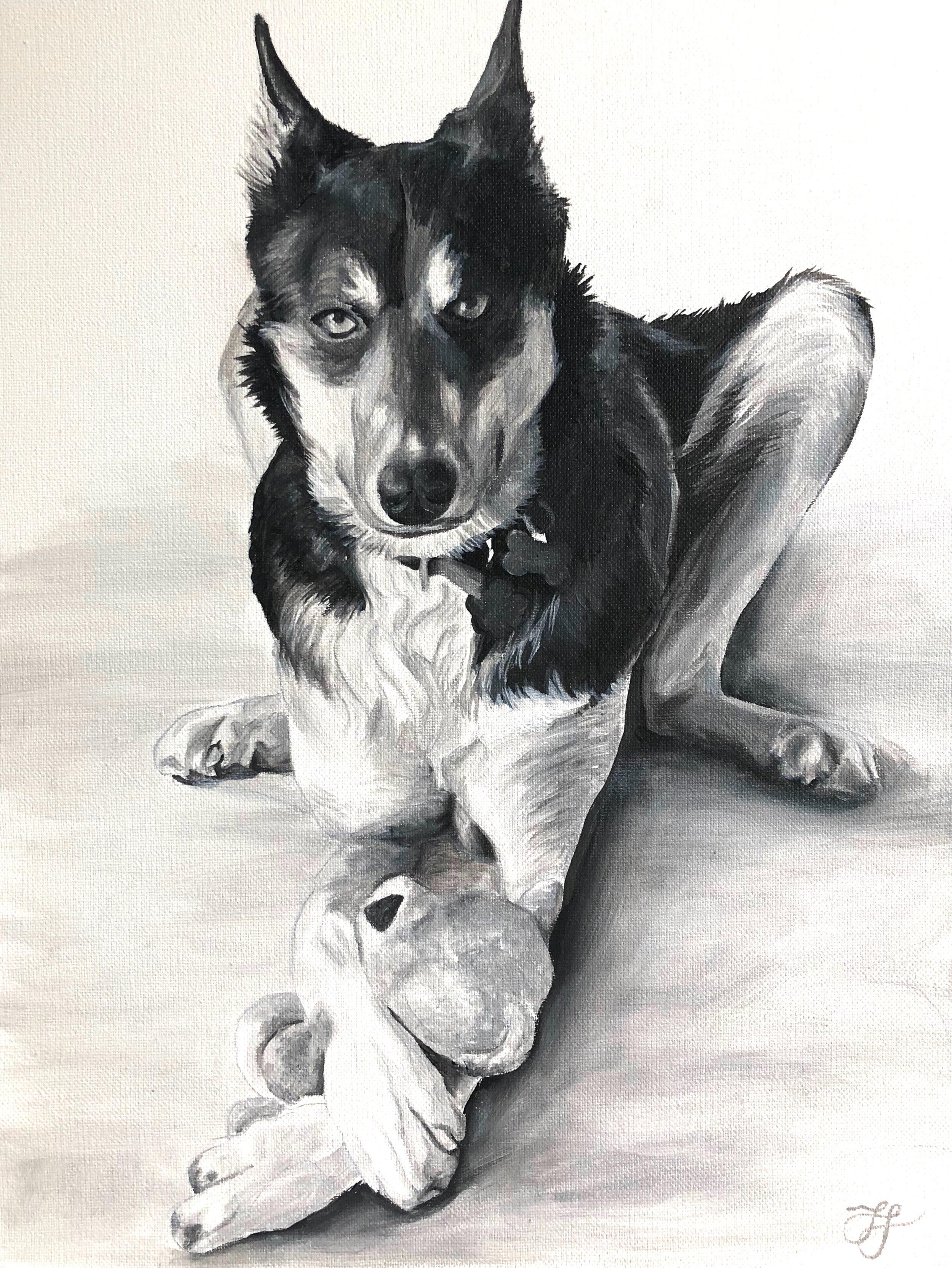 Dog Portrait teddy bear.JPG