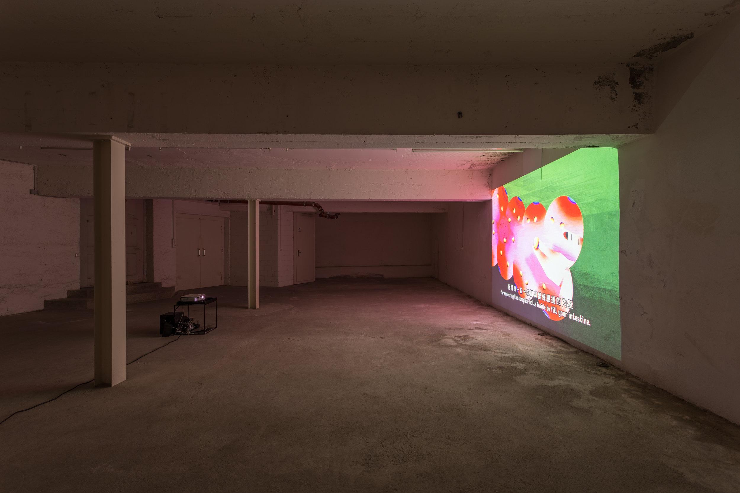 Installation view, 5. Donatella Bernardi & Wong Ping Wong Ping,  Jungle of Desire, 2015, single channel video animation, 6min50sec. Photo: Killian Bannwart