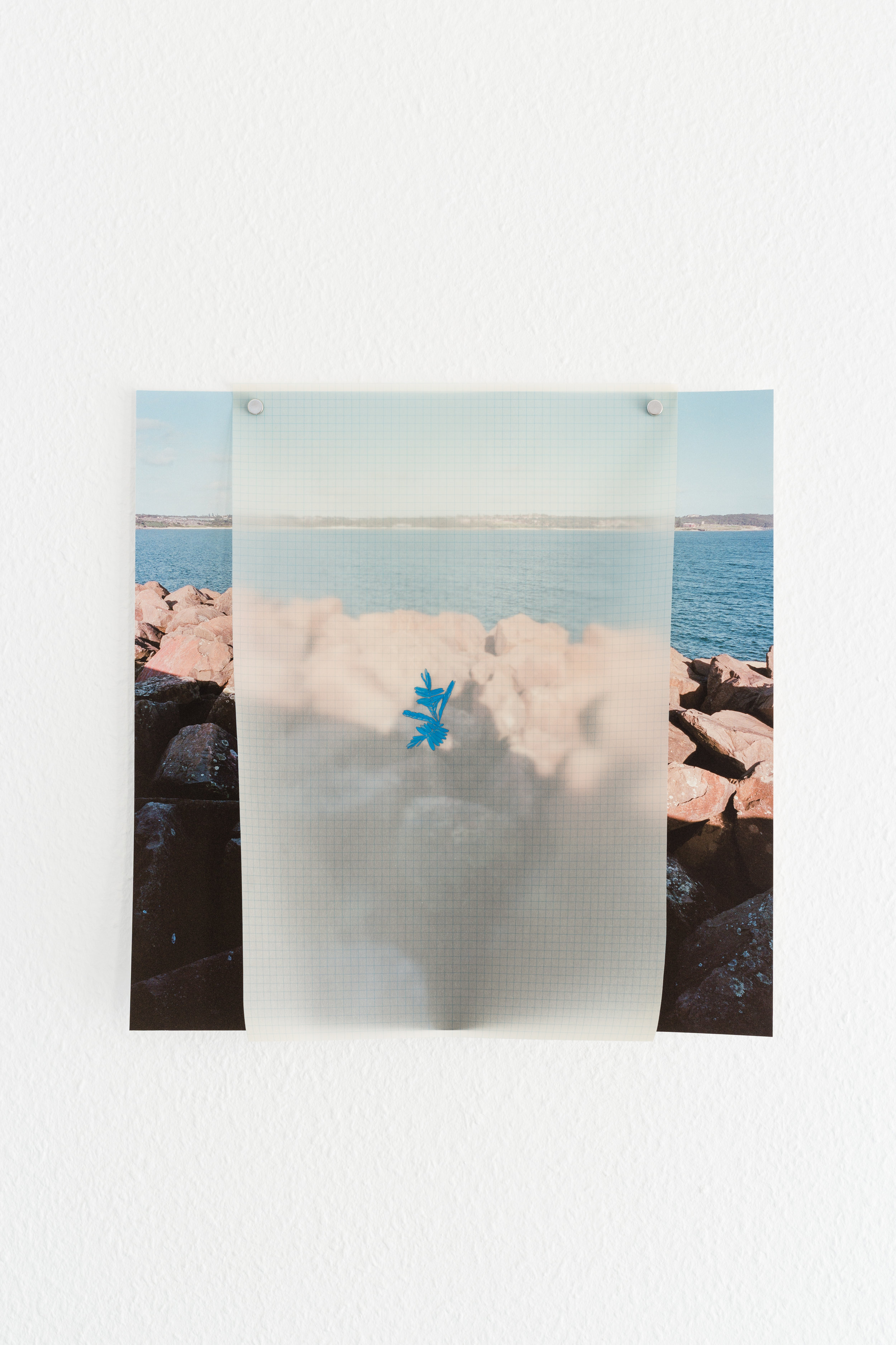 Side Step: Trevor Yeung, You Think You are Mimosa Trevor Yeung,  You Think You are mimosa , 2017, archival inkjet print, tracing paper, gouache, 41 x 40 cm Photo: Kilian Bannwart