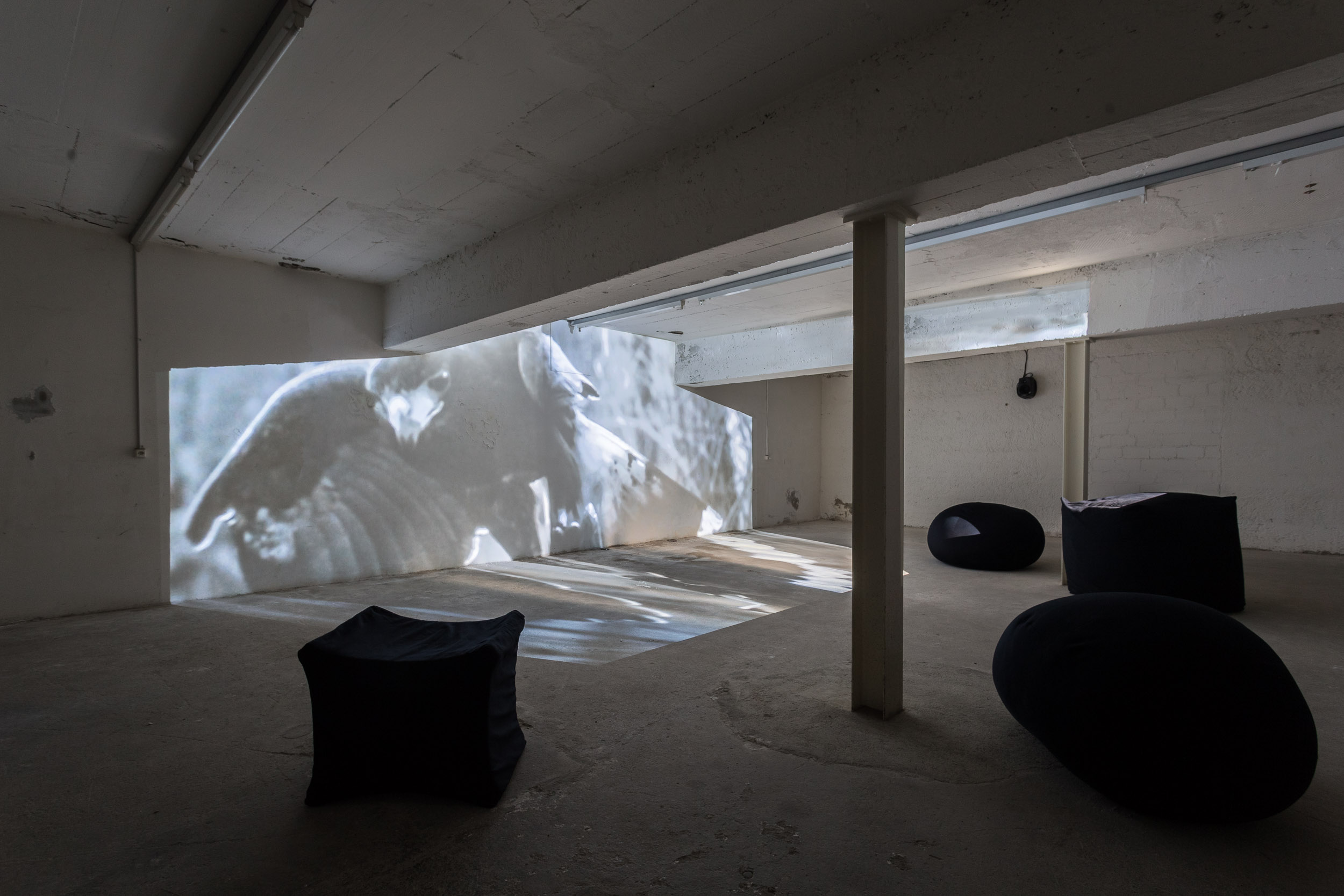 Fiona Banner,  Phantom , high definition digital film, 00:09:28  Fiona Banner,  Full Stop Bean Bags (Peanuts, Klang, Helvetica and Capitalist) , 2015, textile, beans, 62 x 62 x 84 cm; 48 x 48 x 44 cm; 90 x90 x 11cm; 85 x 78 cm  Photo: Kilian Bannwart