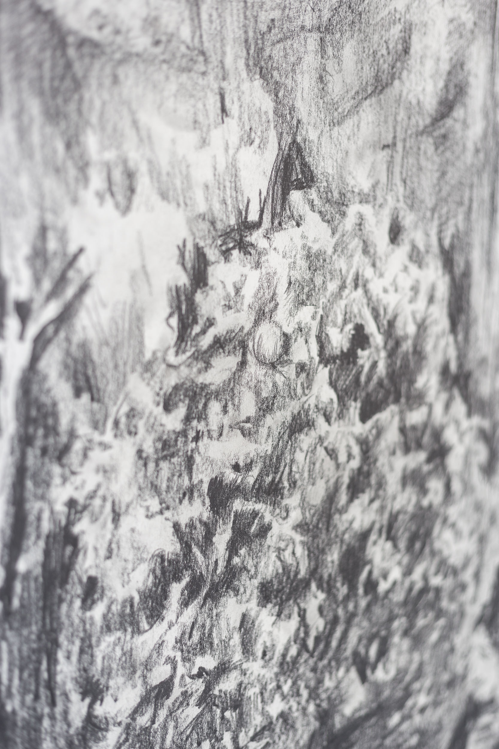 Peter Voss-Knude,  Jungle seen out of the window of a police car  (detail), 2011, pencil on paper, ca. 90 x 100cm  Photo: Kilian Bannwart